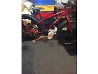Mongoose fat bike bargain brand new
