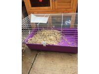 Small rabbit hutch