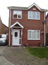 DETACHED MODERN 3 BEDROOM HOUSE WITH GARAGE & CONSERVATORY, AYLESBY PARK. IMMACULATE THROUGHOUT.