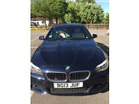 2013 BMW 520 D