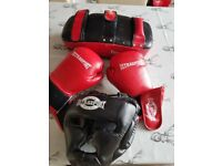 Boxing gloves punch pad face guard
