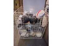 x215 Wire Warehouse Baskets - JOB LOT - SECOND HAND