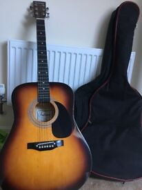 Acoustic Falcon Guitar