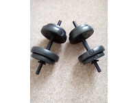 2 Dumbbells/fitness weights
