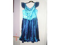 Ladies Western Saloon Girl Costume