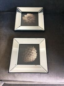 2 mirrored 3D Lilly picture frames