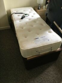 Electric riser single bed