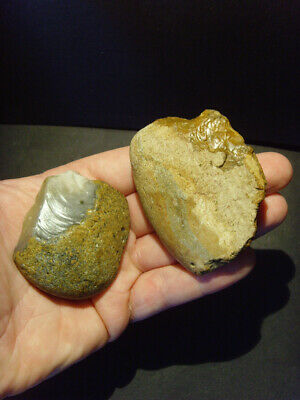 Lower Palaeolithic - Two acheulean pebble scrapers - UK C.450,000+ BP