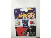 1 x NFL ticket for the Minnesota Vikings vs Cleveland Browns 29/10/17