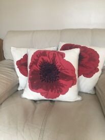Next Cushions PoppyDesign