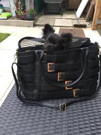 Dog carrier excellent condition