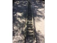 Ladder: wood 2 x sections of 15ft / 5m