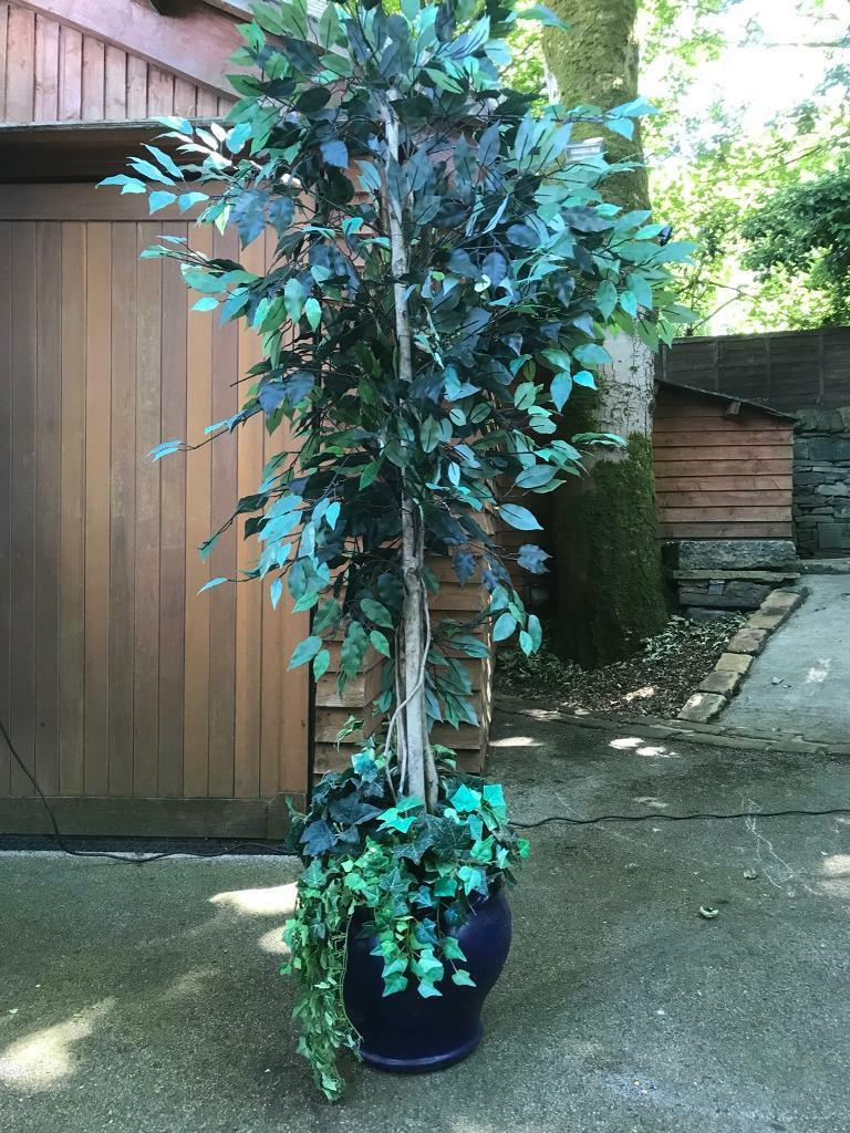 Artificial 7ft tall plastic tree in blue plant pot | in Skipton, North  Yorkshire | Gumtree