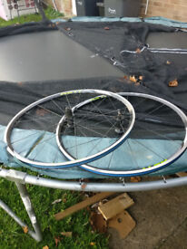 Shimano RS11 9/10/11 Speed Clincher Wheelset