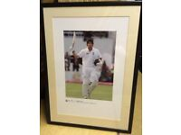 Framed Cricket Photographs
