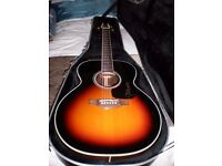 TAKAMINE electro acoustic guitar, excellent condition, FISHMAN electrics, with Takamine hard case