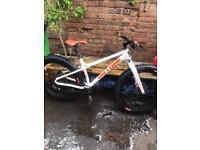 Fat bike mountain bike on one