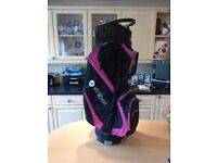 Motocaddy Cart Bag £50