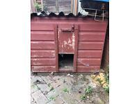 Chicken coop/ rabbit hutch