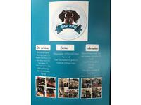 Dog grooming, free pick up and drop offs