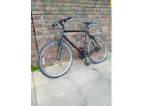 Large Ridgeback Bike. Free delivery