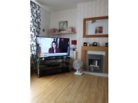 2 bed house in Stechford Birmingham City Council looking for a housing association