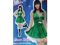 38029 Fever Snow Drop Christmas Adult fancy dress costume with hood & netted underlay. Medium only