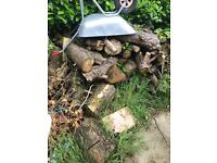 Firewood, free to collector
