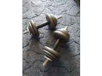 Adjustable Dumbbells, 10kg each, metal plates.