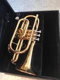 Yamaha cornet YCR2330II (gold lacquer)