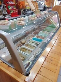 Ice Cream Display Freezer! 13 compartment with lots of storage! Great Condition!