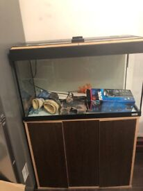 Aquarist classifieds: essex: fishkeeping adverts by county.