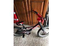 Boys Trex Bike Age 3-6