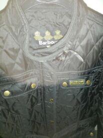 size L (14) coat