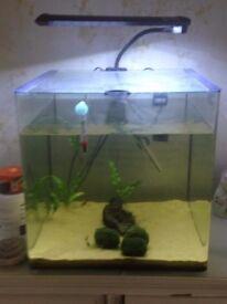 Aqua One tank