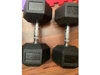 22kg Gym Dumbbell Weights Set of 2