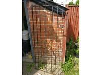 Single metal garden gate