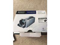 Sony Handycam DCR-SX33E
