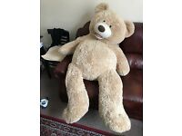 Huge teddy bear. Approx 1.3m tall. RRP was over £150, new unwanted gift