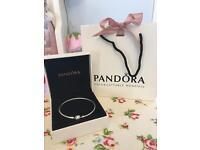 Silver Pandora bangle