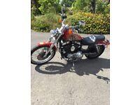 Harley Davidson 1200 Custom Sportster