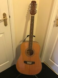 Tonewood 12 string acoustic guitar