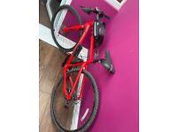 Ridgeback red adult bike