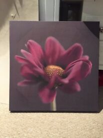 Purple Flowered Canvas
