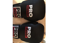 Pro Power Boxing gloves (practically new/used once)