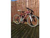 Scott Contessa 40 Ladies Mountain Bike
