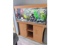 Juwel 300 fish tank