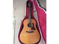 Patrick James Eggle Kanuga acoustic guitar
