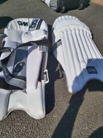 Left handed Batting pads GM