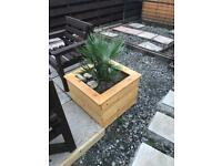 Planters made to order